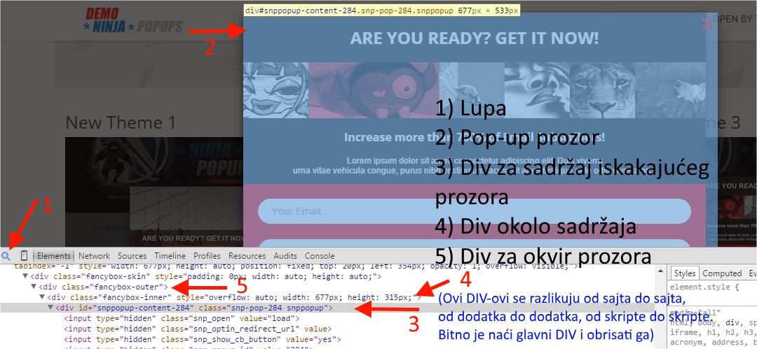 delete-website-popup