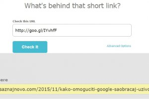 short url checker